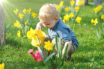 Kind gießt Blumen bei schönem Wetter