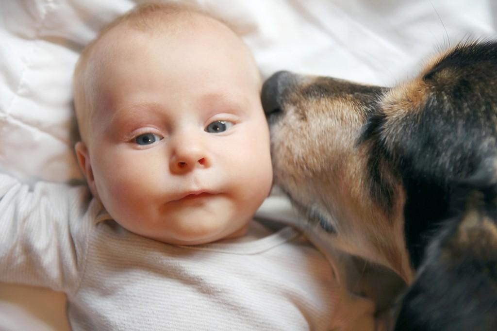 Baby und Haustier