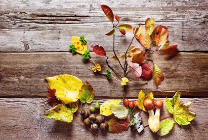 Herbstbastelein