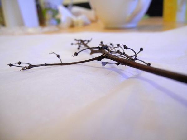Winterbild basteln - kleine Äste