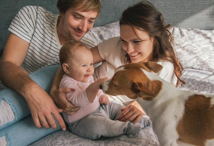 Kleinkind und Haustier