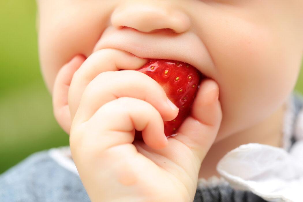Baby led weaning Breifrei Beikost nach Bedarf