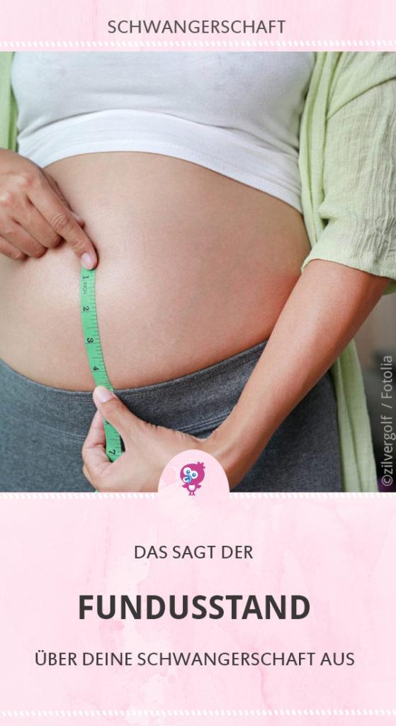 Fundusstand-schwangerschaft