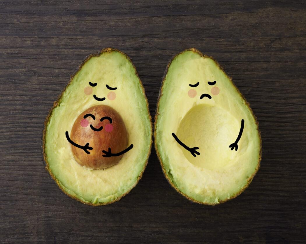 avocado familie schwangerschaft bekanntgeben