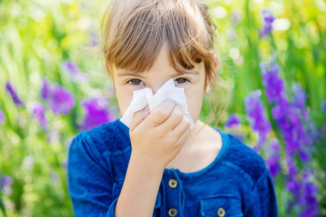 heuschnupfen pollen allergie baby kleinkind