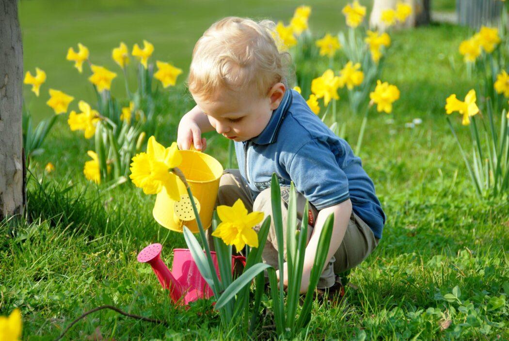 jahreszeiten kleinkind erklären, kleinkind tulpen