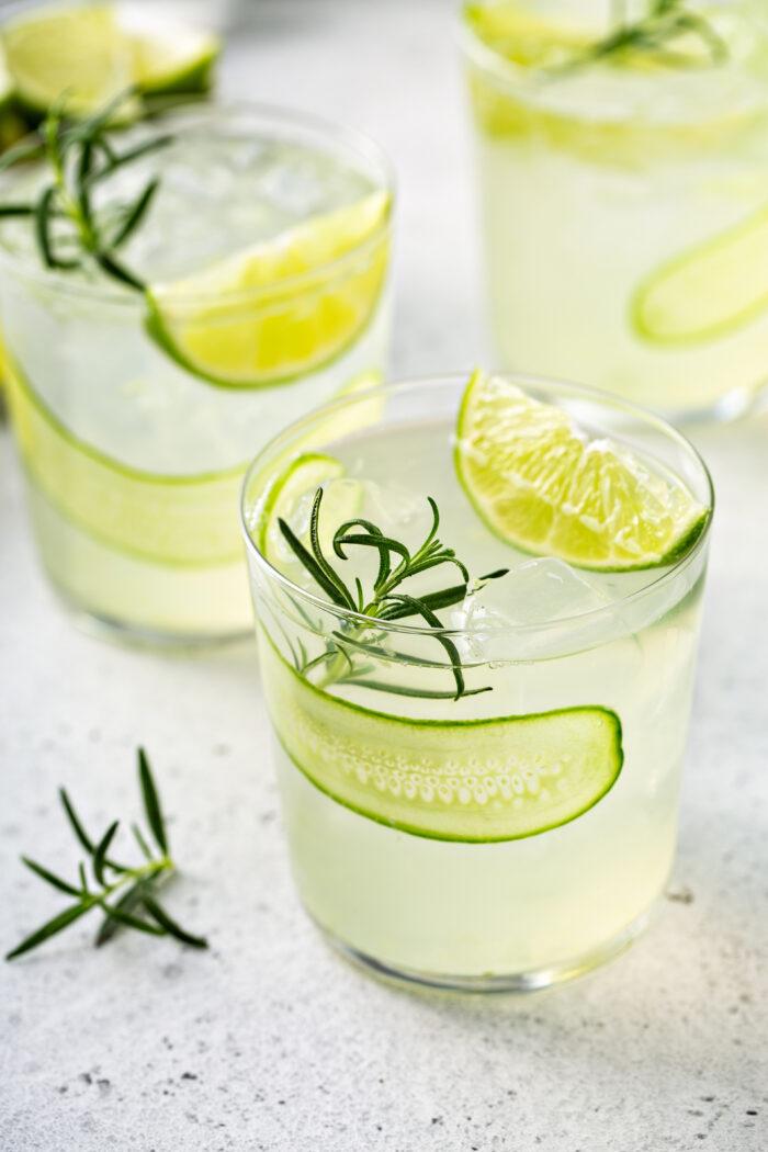 Alkoholfreier Gin Tonic